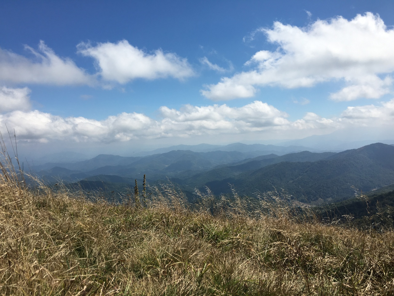 Trail Running in Asheville, North Carolina